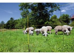 Schafnetz EasyNet mit Bodenabstand Schafnetz EasyNet mit Bodenabstand