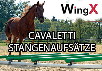 WingX Cavaletti Stangenaufsätze